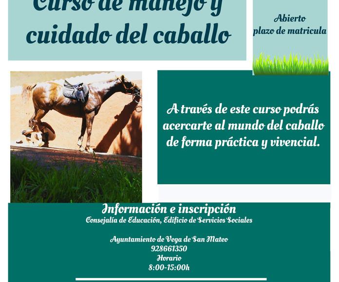 Curso de manejo y cuidado del caballo