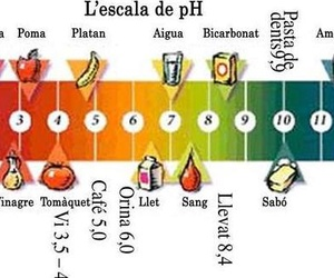 L'Escala de PH