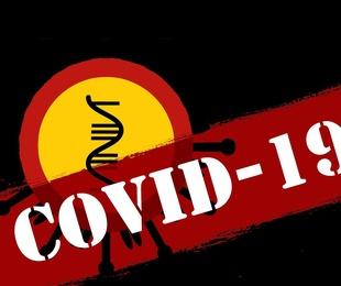 Brote de enfermedad por coronavirus (COVID-19): orientaciones para el público de la OMS