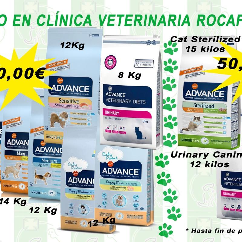 Piensos y accesorios: Servicios de Clínica Veterinaria Rocafort