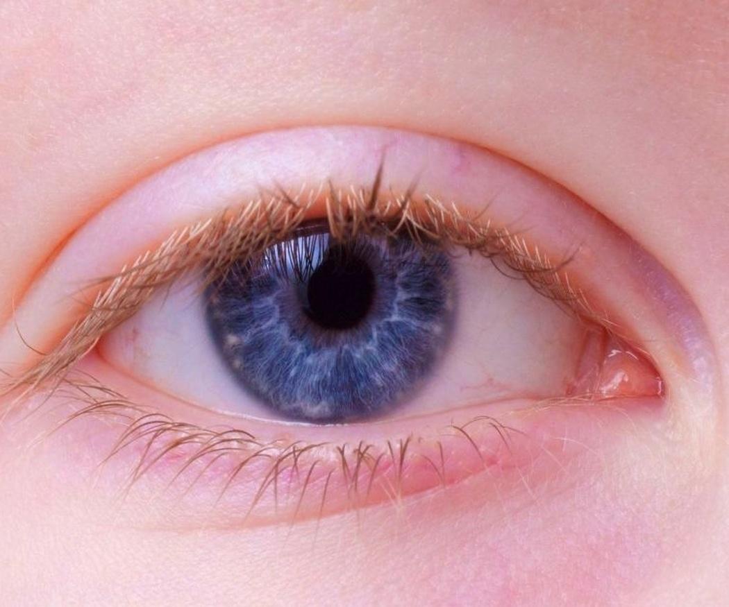 ¿Conoces la iridología?