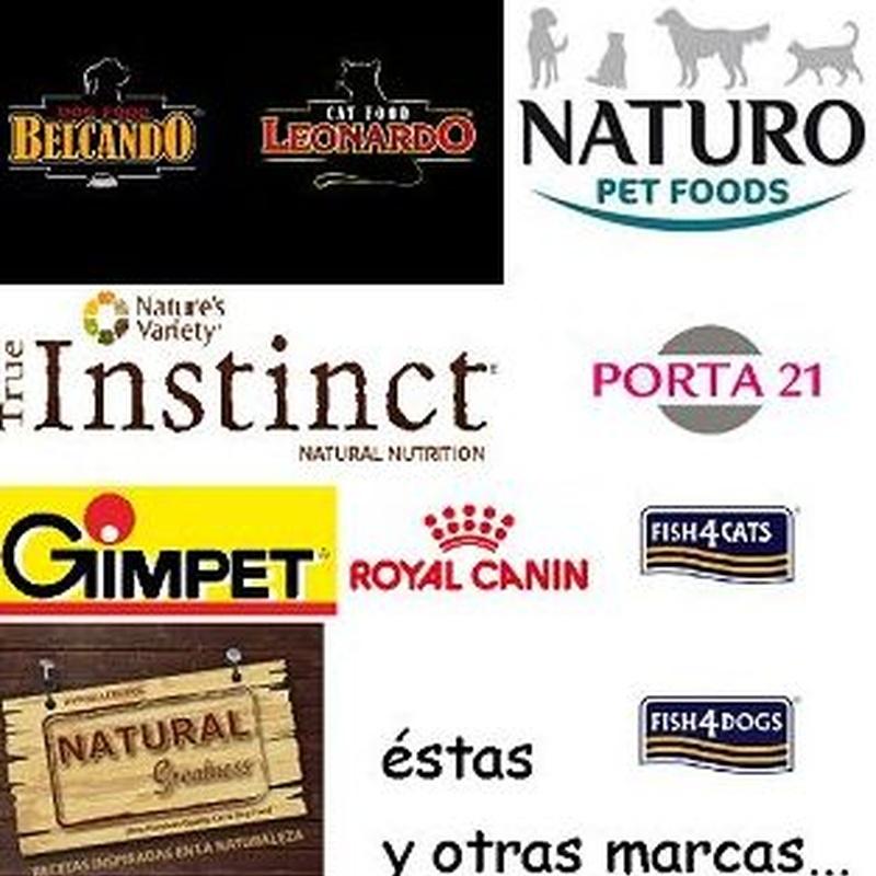 Alimento húmedo para perros y para gatos Bilbao