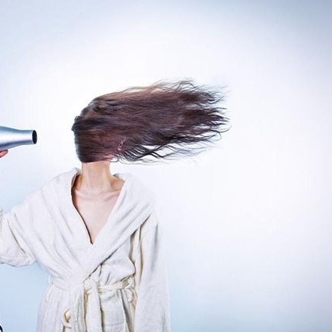 Qué champú usar según el tipo de cabello