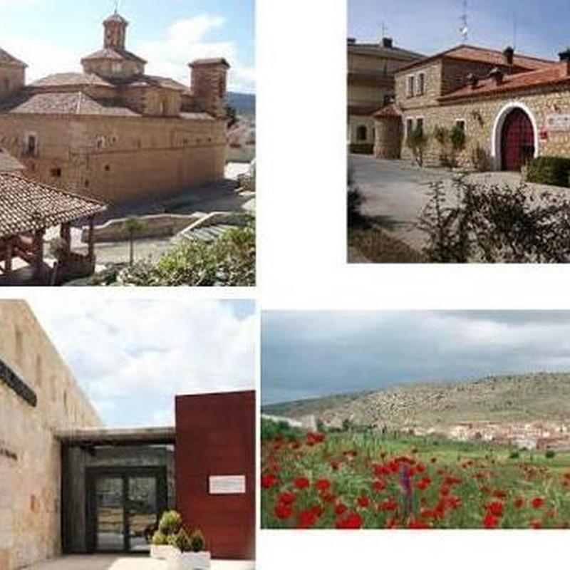 Vistas aconsejadas: La Casa Josefina de Casa Josefina