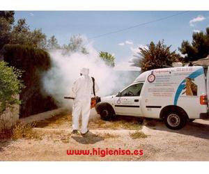 Empresa de fumigaciones en Alicante