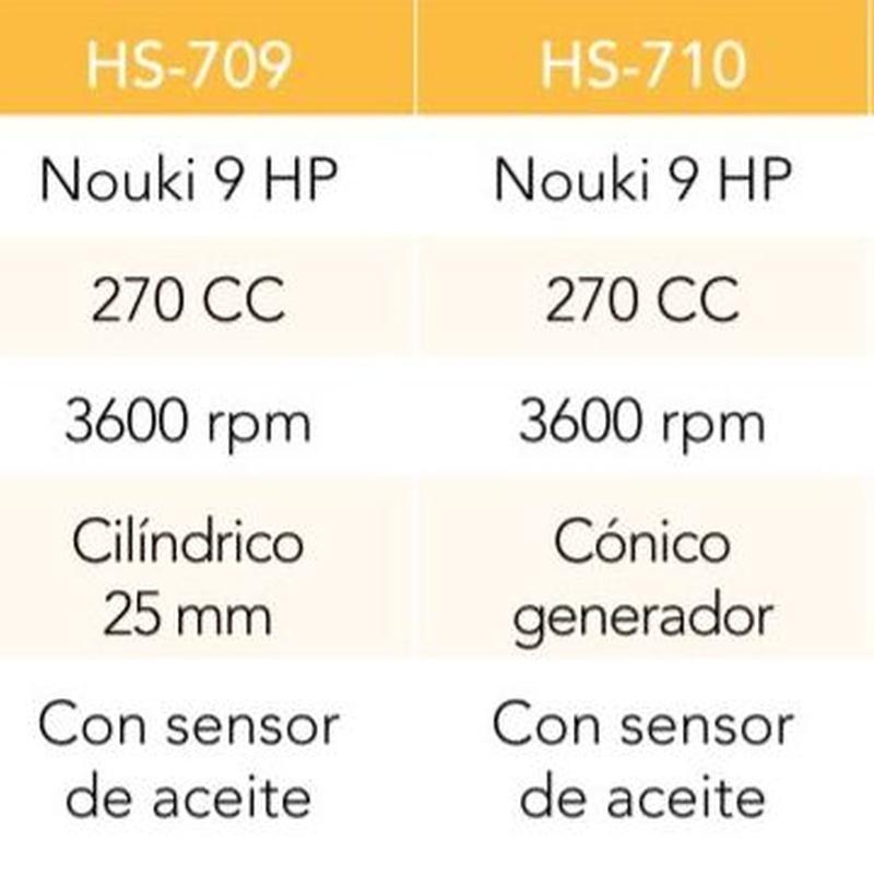 MOTOR (TIPO HONDA)270 CC 3600 RPM 9 HP EJE CILINDRICO 25 MM  Cód. HS-709: Productos y servicios de Maquiagri