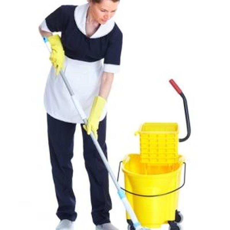 Otras limpiezas: Servicios de La Luna Azul