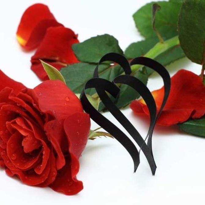 Regalar flores para San Valentín