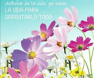 Flores de bach manuales en Tarragona