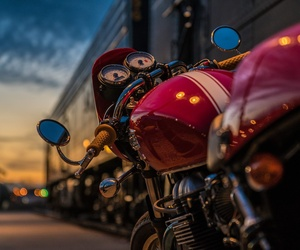 Todos los productos y servicios de Venta y reparación de motos: Motos Borbó
