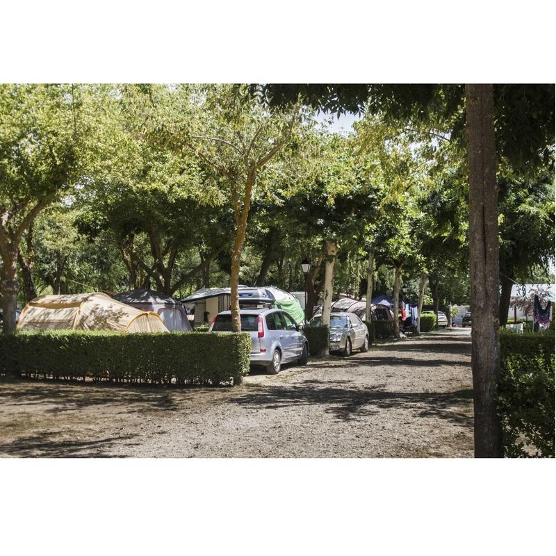 Parcelas: Servicios de Camping Don Quijote