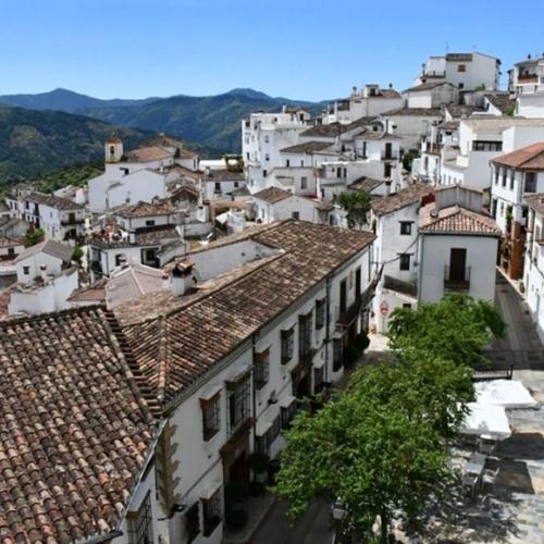 Ayuntamiento de Benalauria y fiestas patronales
