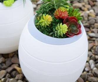 Flores y plantas: Servicios  de Floristería Lislore