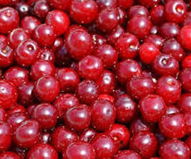 Antioxidantes: nutrientes clave para el sistema inmunitario