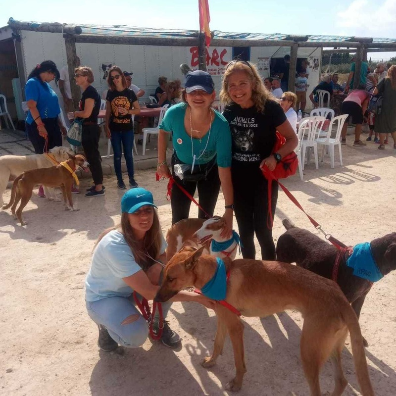 BARC WET NOSE DAY 2019 - APAC voluntarias Laia, Natascha y Reyes