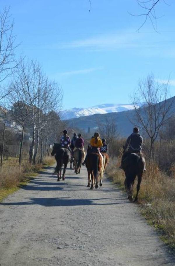 Paseos a caballo: Servicios de Club Hípico de Cenes