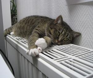 Olvídate del frío en invierno, acondiciona tu hogar