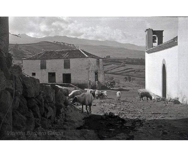 Finca Los Viñedos en Santa Cruz de Tenerife
