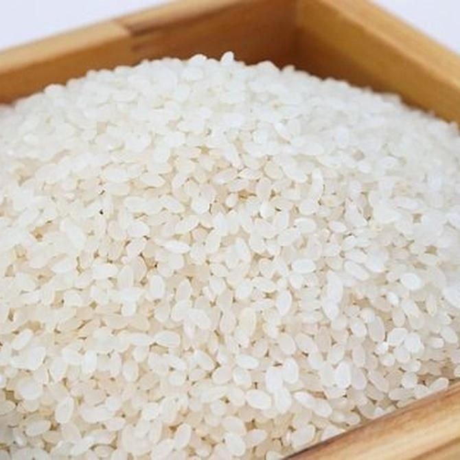 ¿Cómo llegó el arroz a España?
