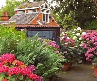 Mantenimiento de jardines: Productos y servicios de Marga Garden
