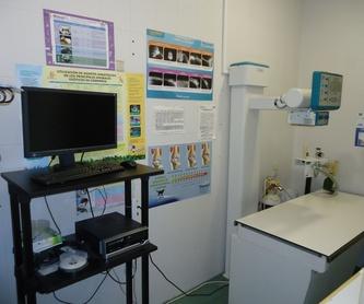 Laboratorio propio: Servicios de Clínica principal Veterinaria Puerto Mazarrón
