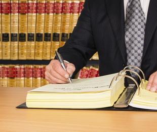 Consulta, tramitación de expedientes y procedimientos judiciales