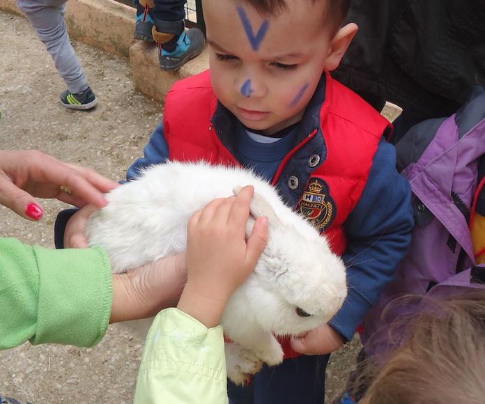 Excursión a la granja escuela