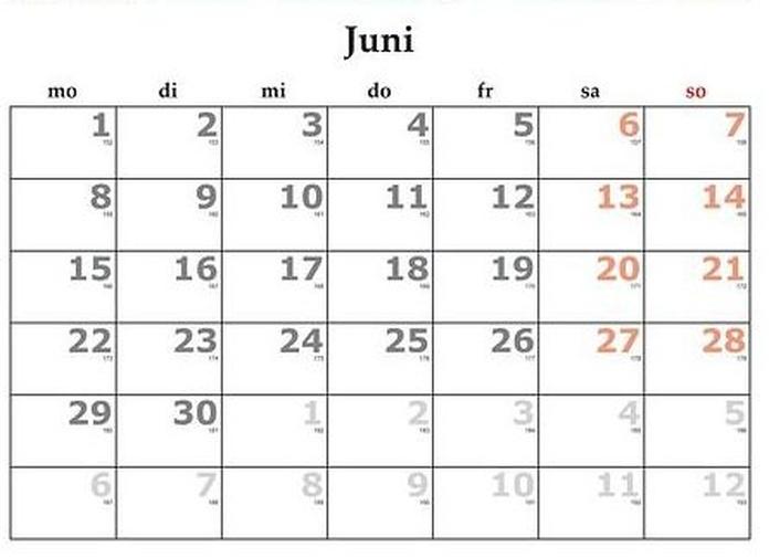 Junio: Servicios y Campañas de Clínica Veterinaria Benicalap