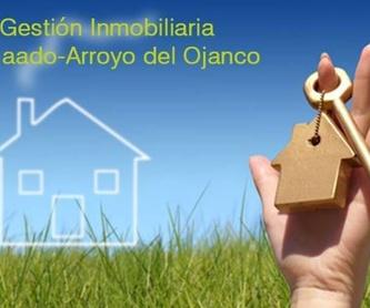 Gestión contable: Asesoría e Inmobiliaria  de ASESORES ARROYO DEL OJANCO