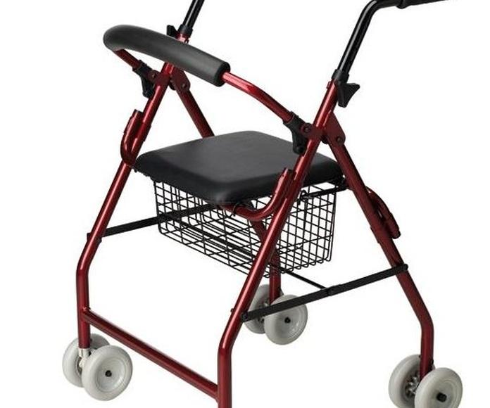 """Andador """"roler"""" de 4 pares de ruedas"""