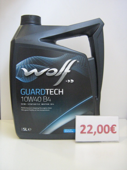 WOLF GUARDTECH 10W40 B4 : Servicios de Safety Car