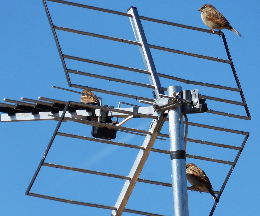 Tipos de antenas para televisión