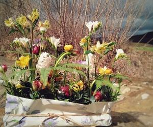 """Hay encargos especiales... Nos pidieron una composición para llevar a un funeral que pareciese """"un trozo de campo con muchas florecitas""""."""