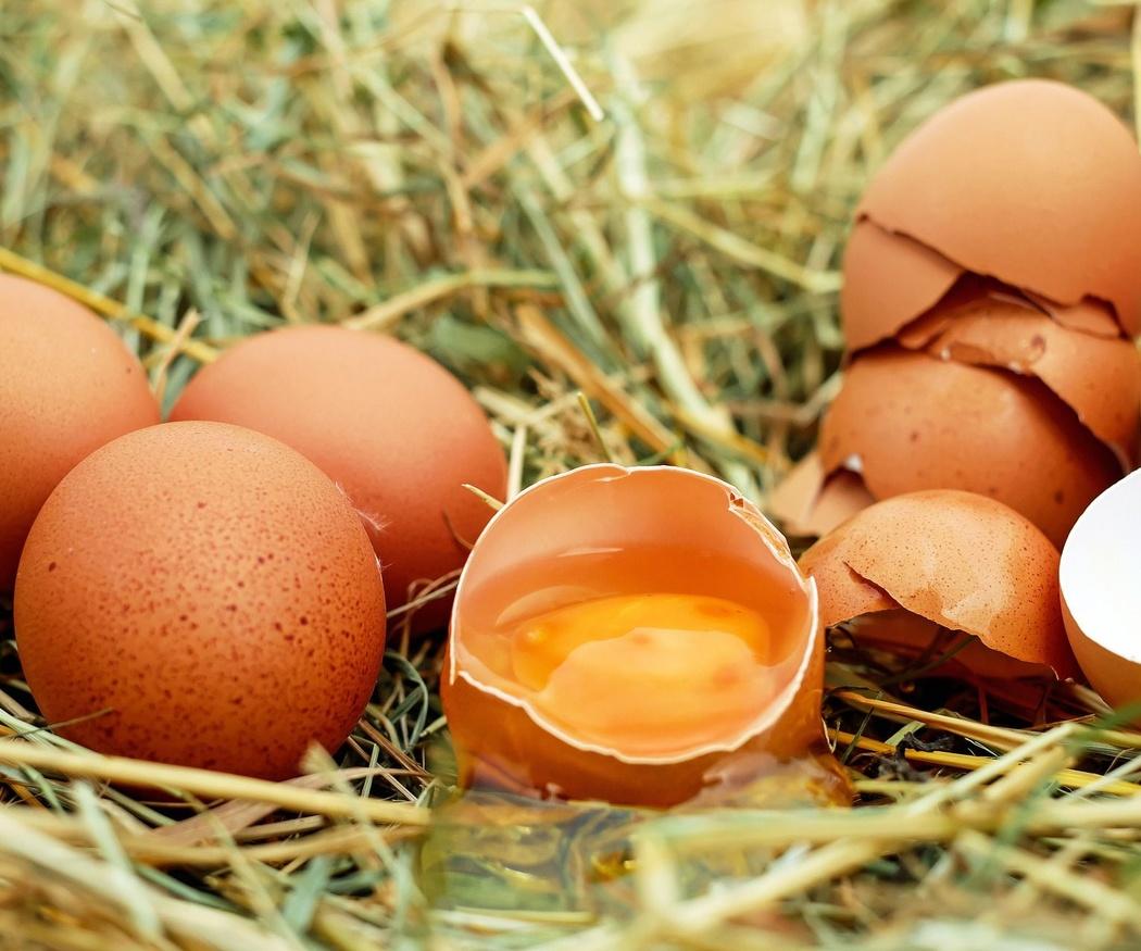 Beneficios del huevo