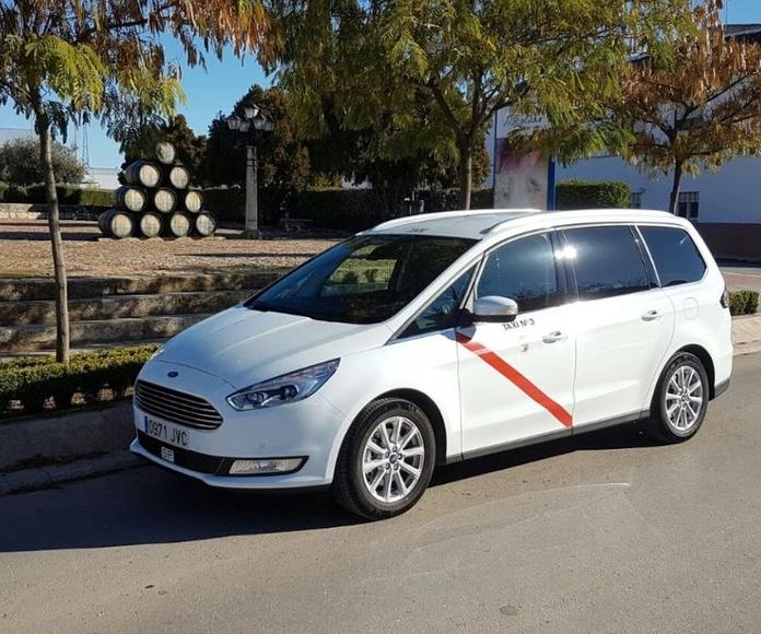 Monovolumen: Servicios de Victoriano Alhambra Taxi
