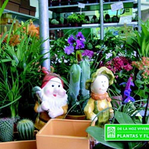 Viveros de plantas en San Sebastian de lo Reyes