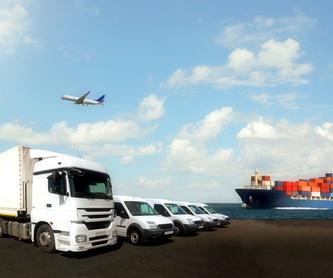 Transporte de mercancías perecederas:  de GRUPO Trans-Illes