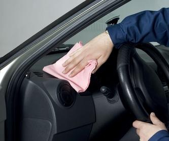 Básico: Servicios de Limpieza de Car shower manresa