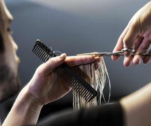 ¿Cómo elegir escuela de peluquería?