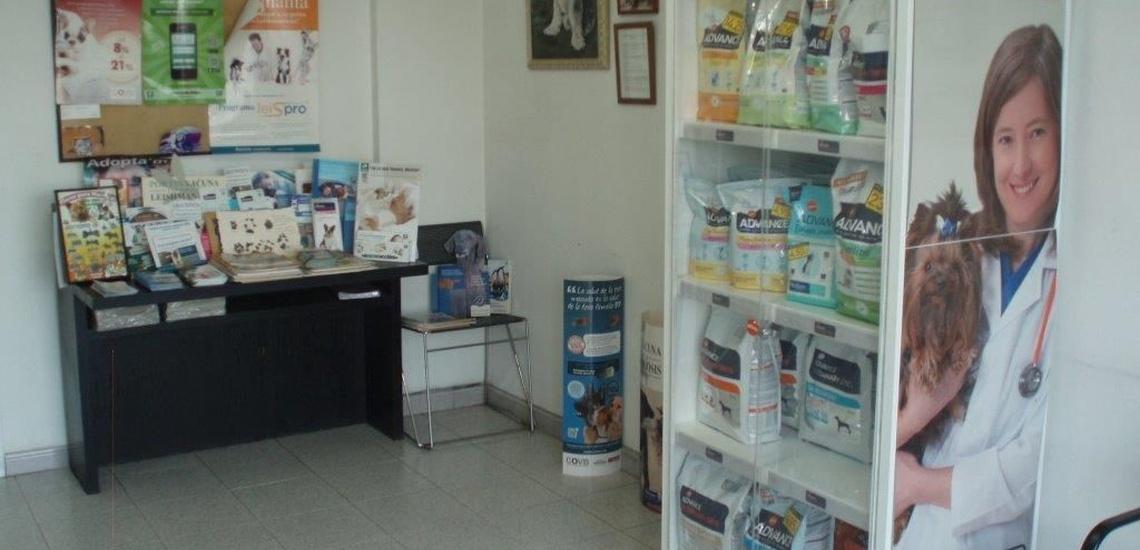 Centro veterinario en Arensy de Mar