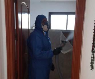 Control de plagas: Servicios de Castesol