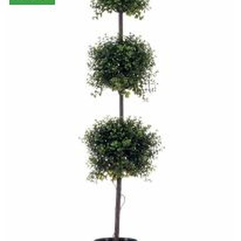 árbol boj triple bola