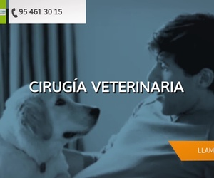 Clínica veterinaria urgencias Sevilla