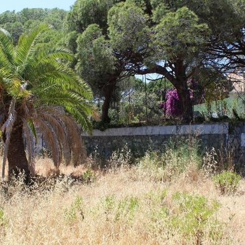 Elviria – Terreno Urbano / Ref.- ID-R3203992: Inmuebles de DreaMarbella Real Estate