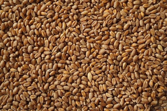 Transporte de cereales: Servicios de Transportes Logística Marín