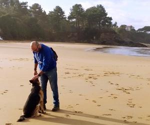 Adiestramiento Canino A Coruña
