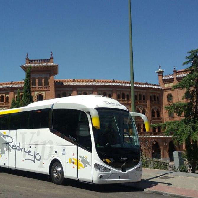 Ventajas de las excursiones en autobús