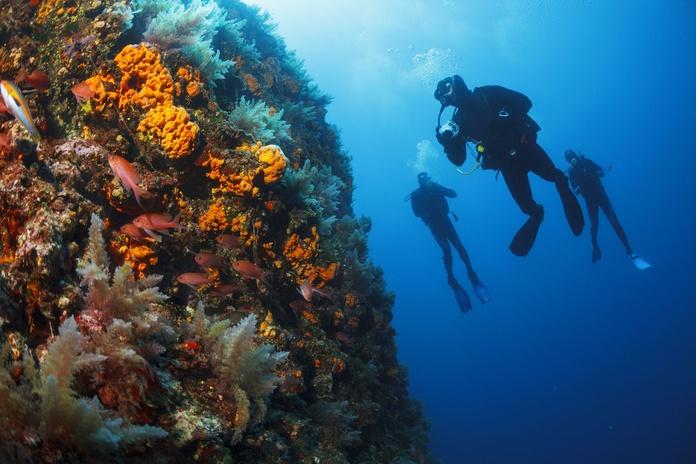 Deportes y submarinismo: Servicios de Centro Médico Pacar