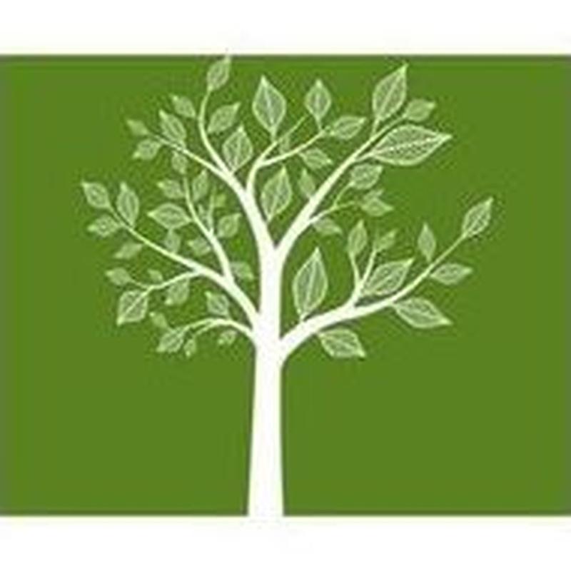 Talleres para padres/madres: Servicios de Psicóloga Helga Puerta