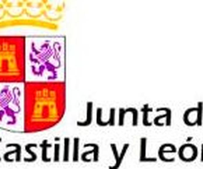 PERSONAL DE SERVICIOS  JUNTA DE CASTILLA Y LEÓN. CONVOCADAS 384 PLAZAS.: OFERTA FORMATIVA de Academia Darwin